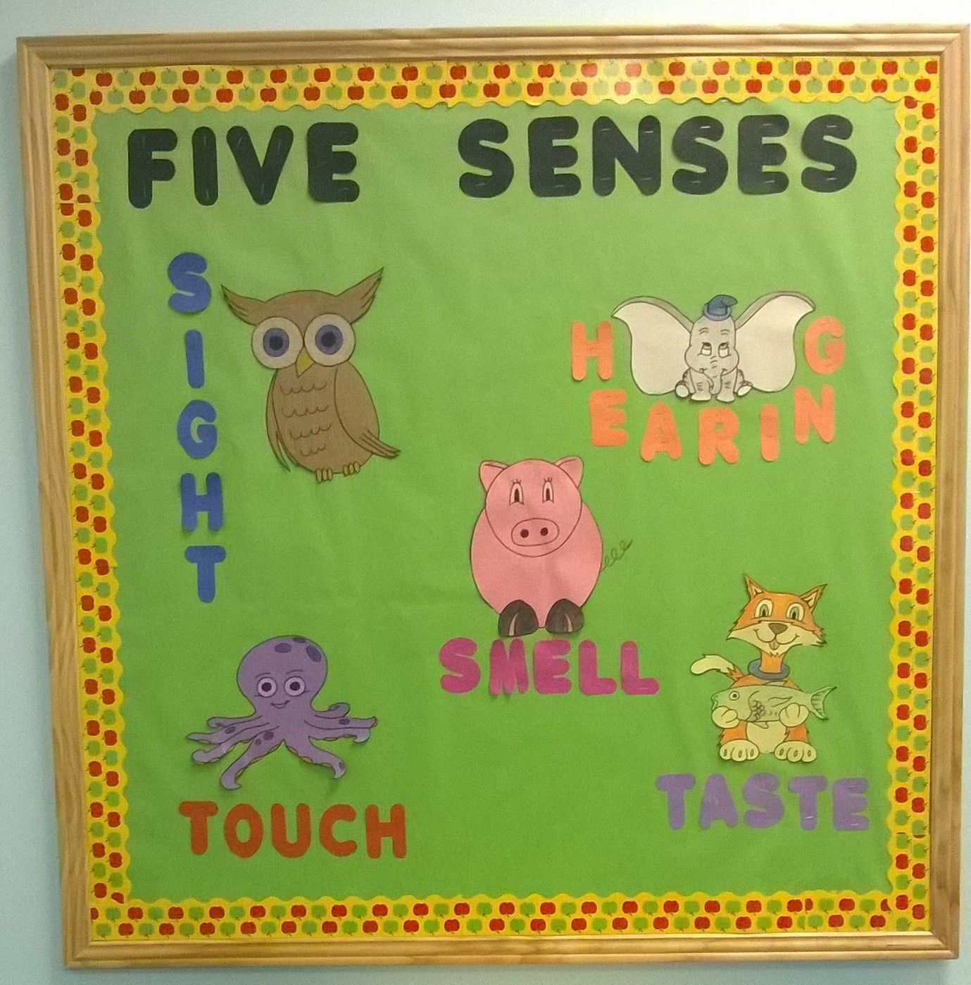 Five Senses Bulletin Board I Drew Out The Animals And