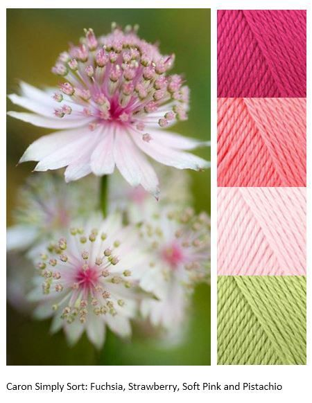 Mood Boards Pippin Poppycock Ami Pinterest Caron Simply Soft