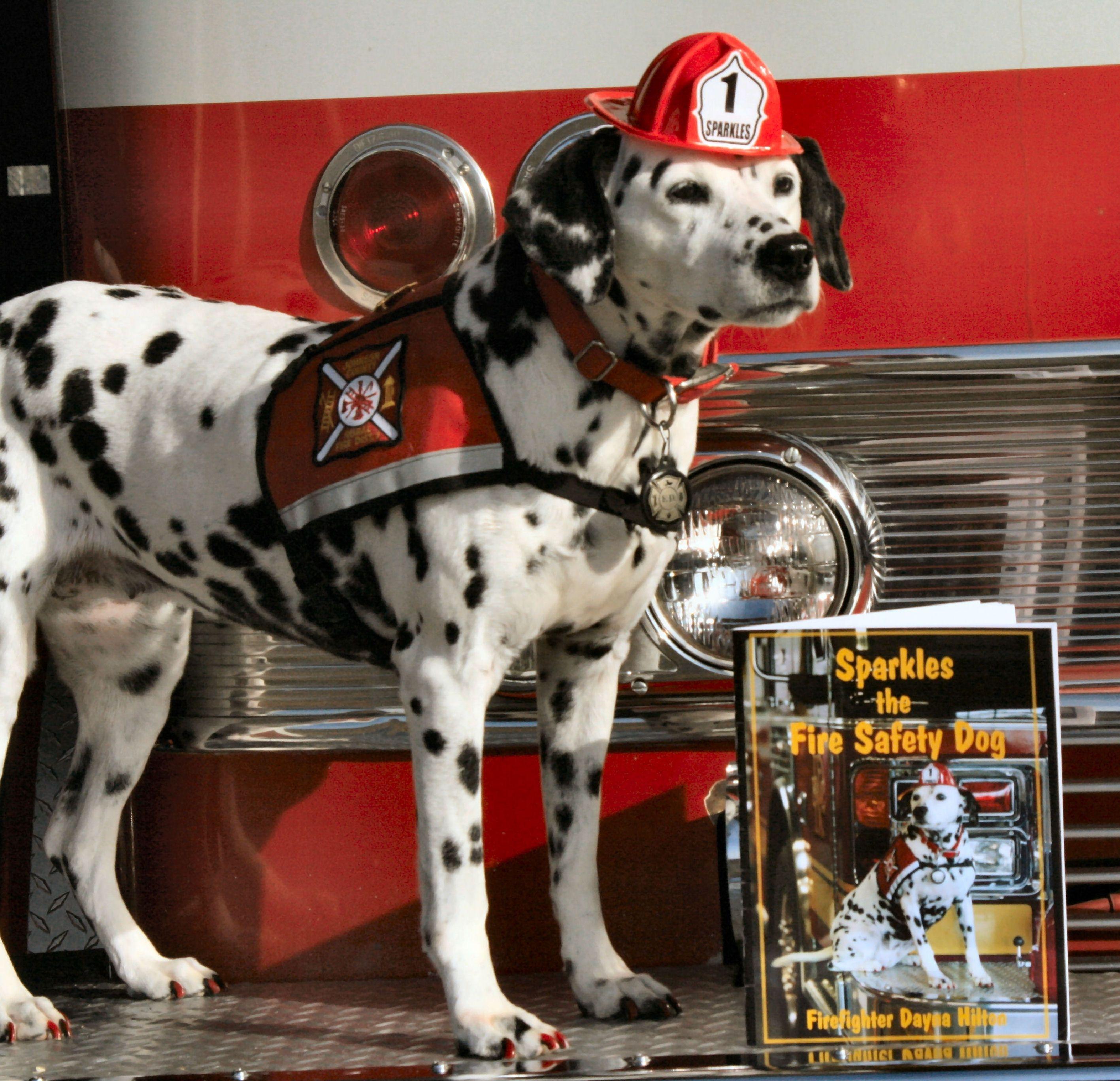 Firefighter Dog firefighter firefighterdaily