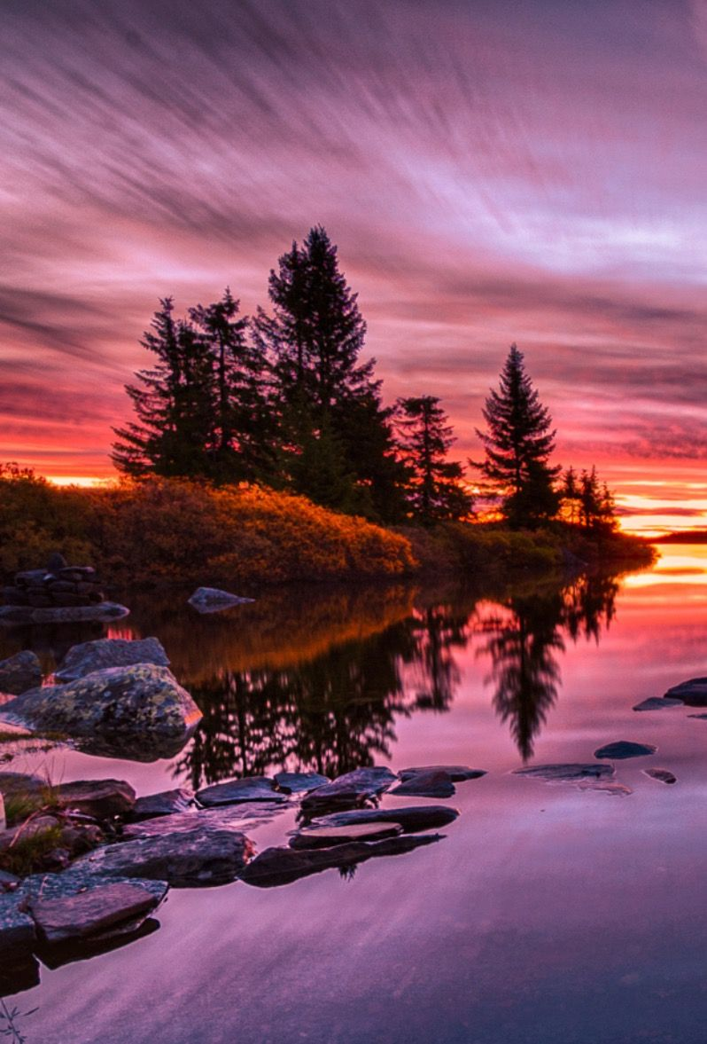 autumn morning by Jørn Allan Pedersen / 500px (Norway)