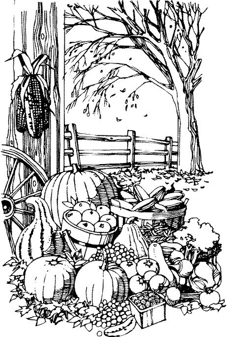 harvest 2 | Fun to Color | Pinterest | Adult coloring, Coloring ...