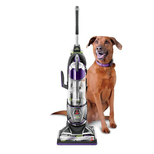 Powerglide Lift Off Pet Plus Upright Vacuum 2043 Dog Stuff
