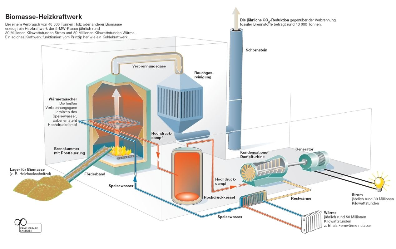 Biomasse Heizkraftwerk | Info Graphics | Pinterest | Info graphics