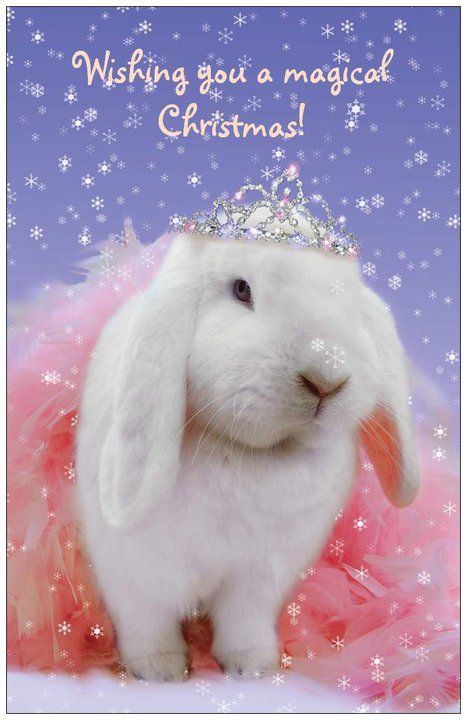 #December #Christmas