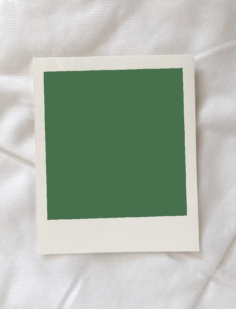 Fotos Polaroid Fotos Polaroid Effektive Bilder Die Wir Uber Decorative Pillows Anbieten Ein Qu In 2020 Instagram Rahmen Grafikdesign Poster Digitaler Bilderrahmen