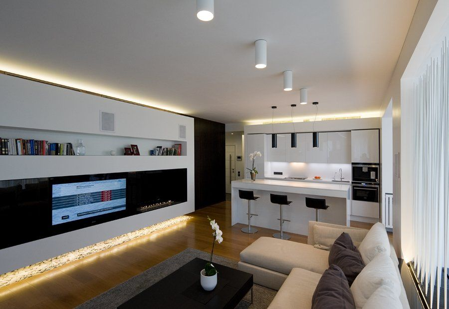 Contemporary Apartment Interior Design With Modern Minimalist Living Room And Kitchen Area