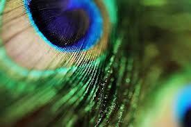 emerald green - Google zoeken