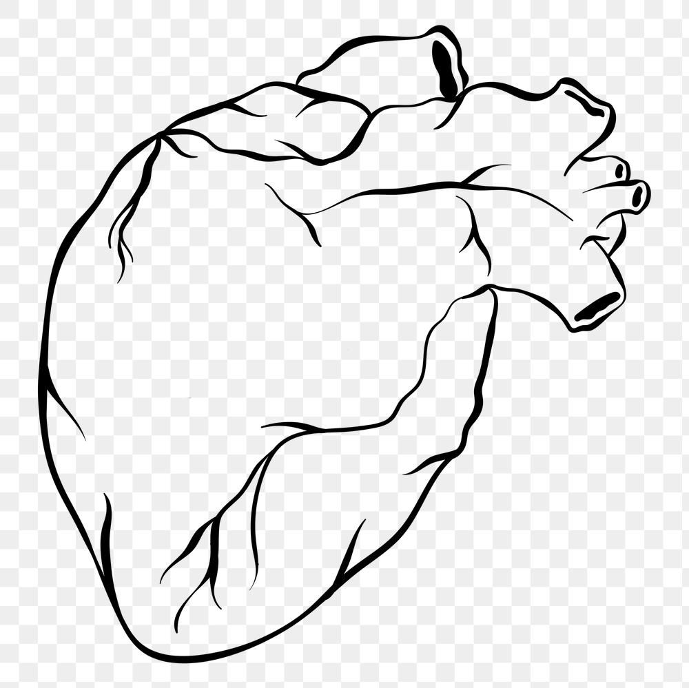 Vintage Out Line Human Heart Old School Old School Tattoo Png Icon Free Image By Rawpixel Com Techi Human Icon Old School Tattoo School Tattoo