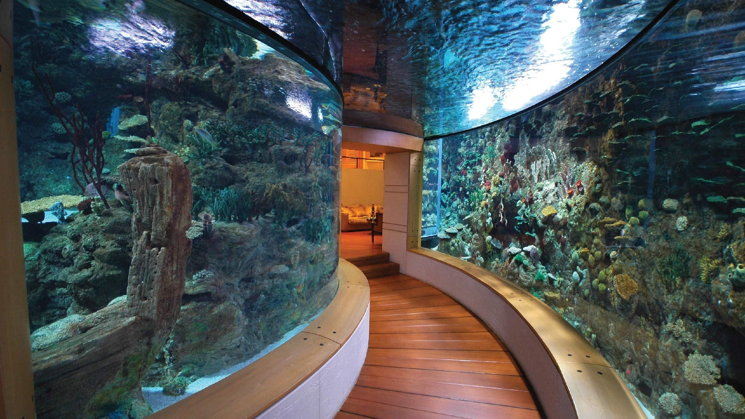 10 Homes With Their Own Shark Tanks Posh Luxury Estates