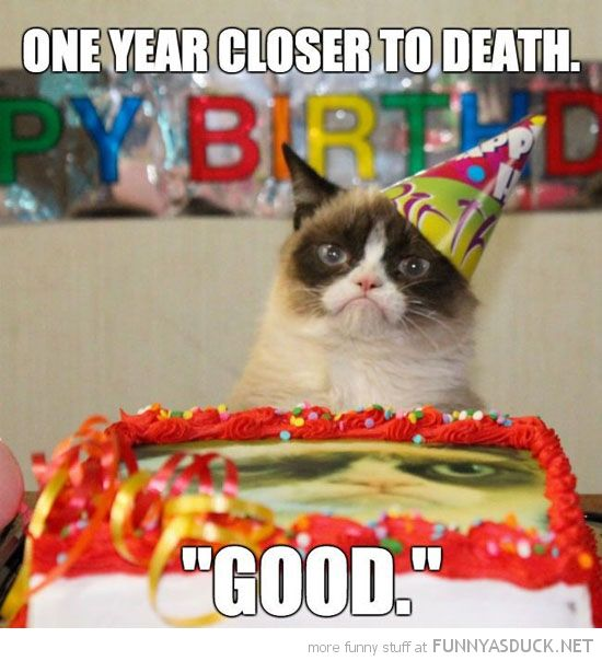 happy birthday quotes and images animals - Google Search