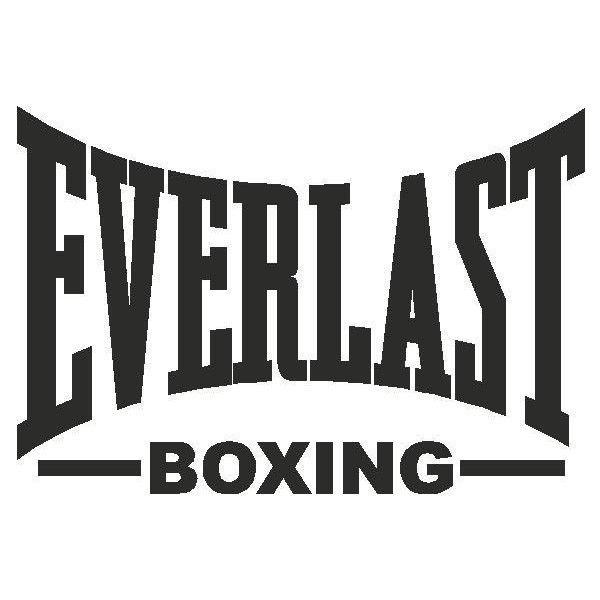 Image result for everlast logo