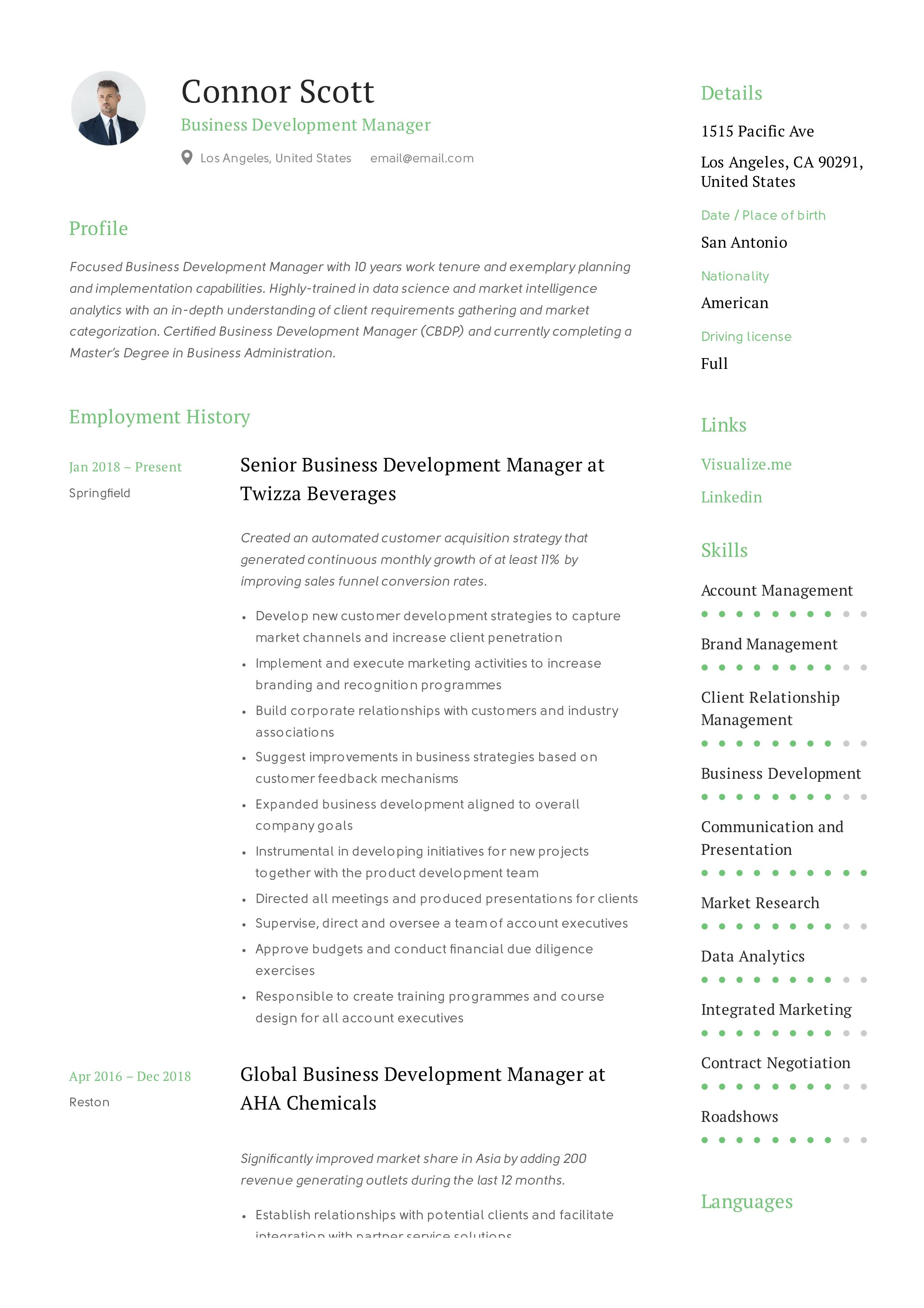 Business development manager resume template business