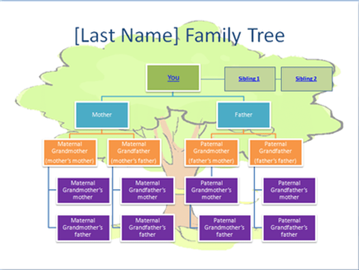 5 ways to create and display your family tree family tree stuff