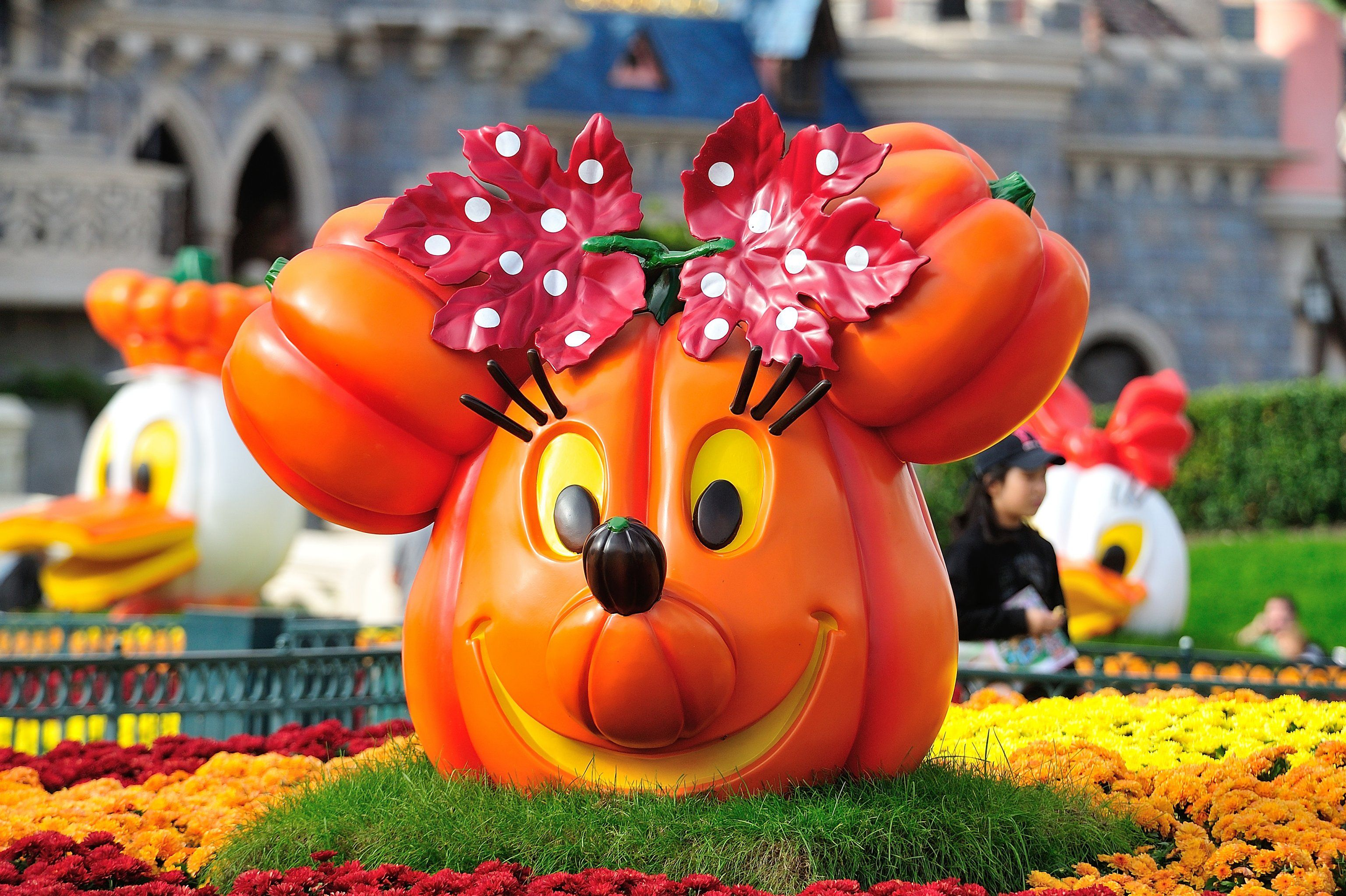 Pumpkins at Disneyland Paris