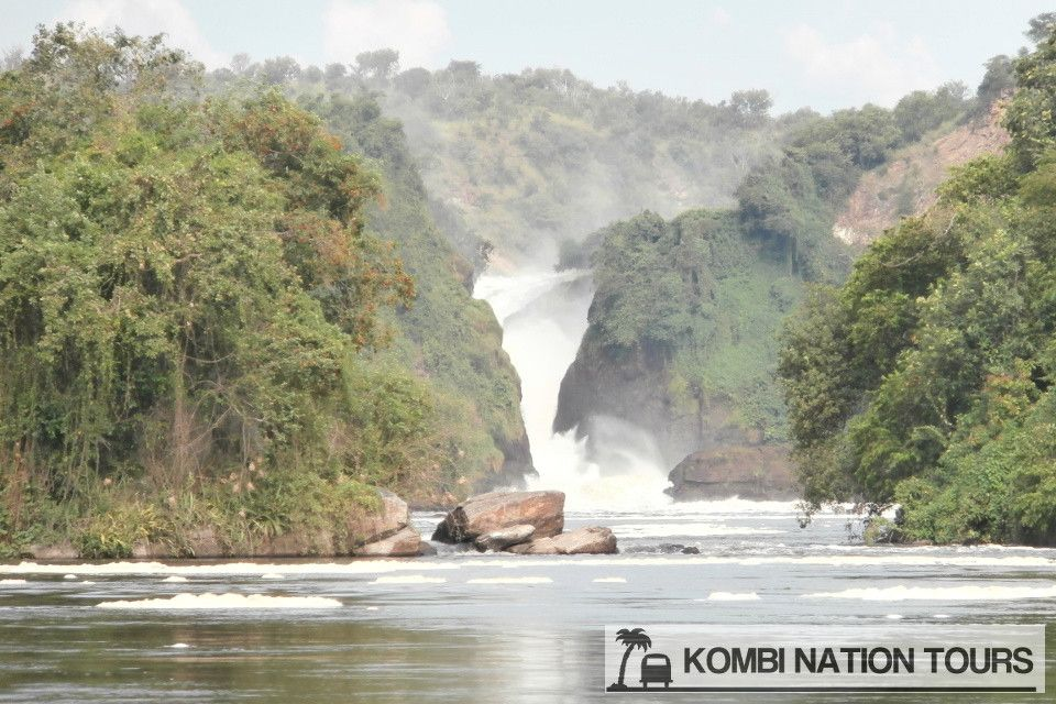 Day 4: North to Murchison Falls National Park --- Make the drive north from Queen Elizabeth National Park passing the Rwenzori Mountains chain to reach Murchison Falls National Park and its famous waterfall. For more information on this trip you can find the full itinerary on www.kombitours.com or contact us on info@kombitours.com or +256 792 933 773. Image Credit: Kombi Nation Tours.