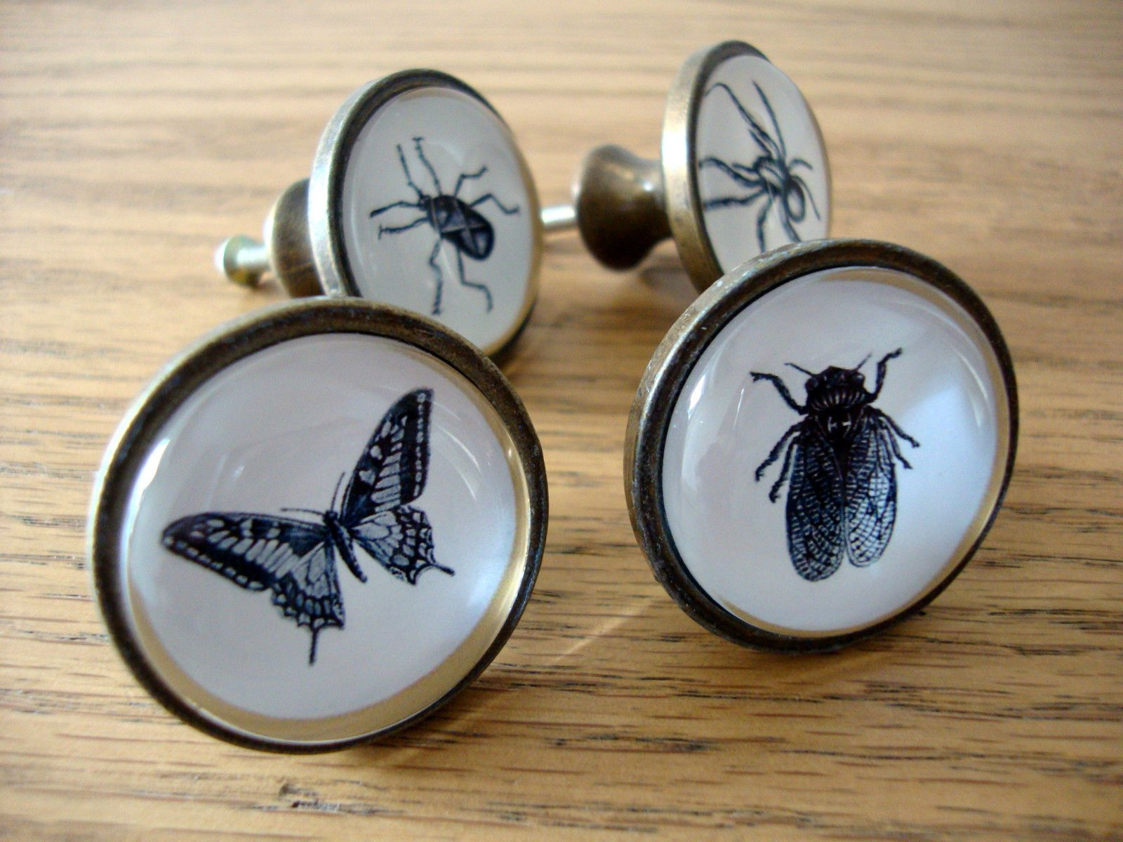 Insect Drawer Knobs Spider Fly Beetle Cupboard Door Handles Pulls