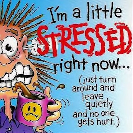 I M A Little Stressed Right Now Funny Quotes Quote Crazy Funny