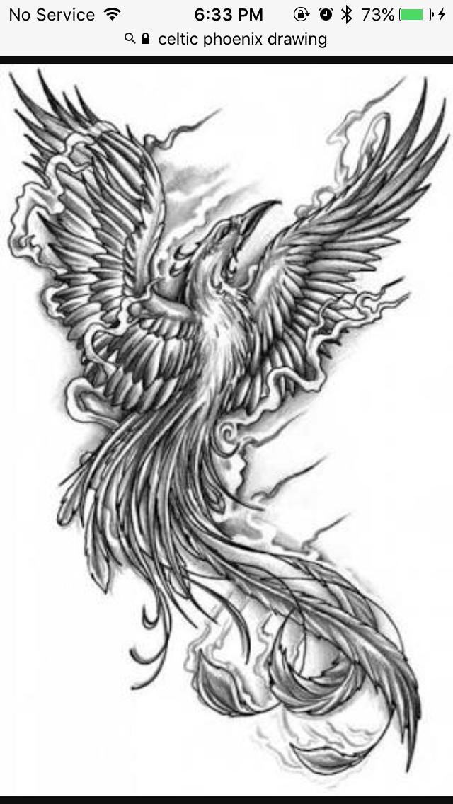 celtic phoenix ink pinterest phoenix tattoo and tattoo designs. Black Bedroom Furniture Sets. Home Design Ideas