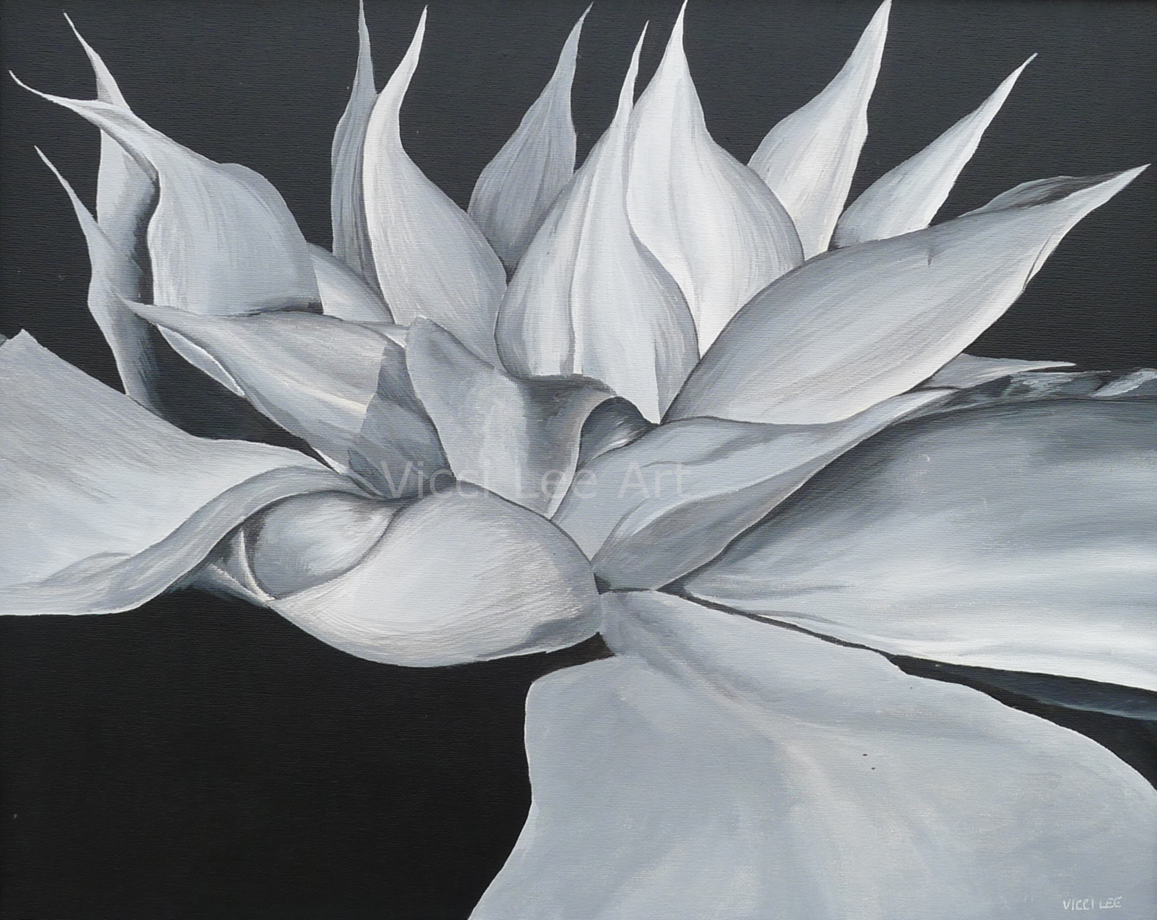 Clematis Painting Black And White Flower Flower Detail Floral Art