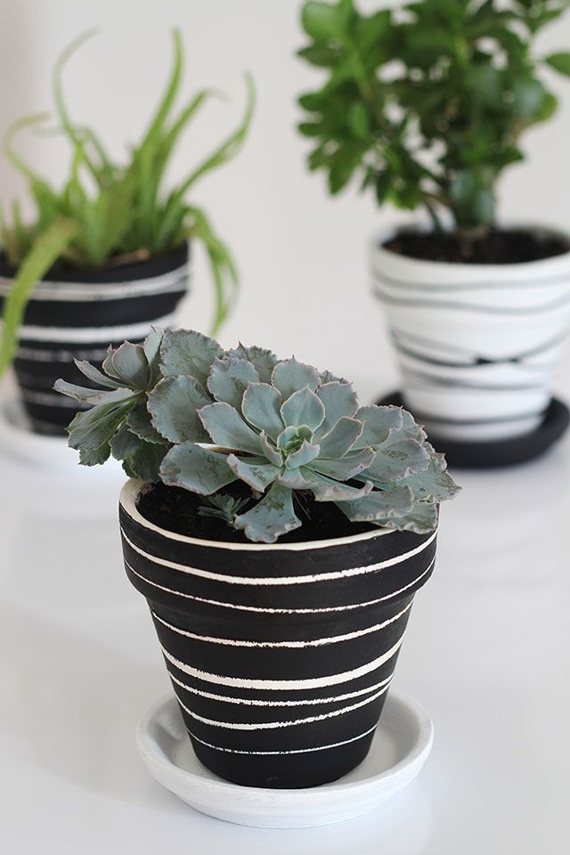 Pots with rubber bands DIY Weekend Projects