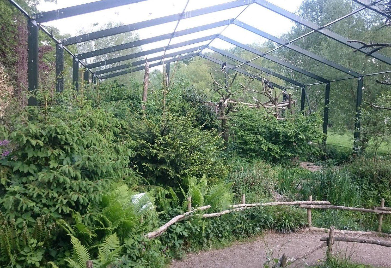 15 Amazing Bird Aviaries | Bird aviary, Aviary, Birds