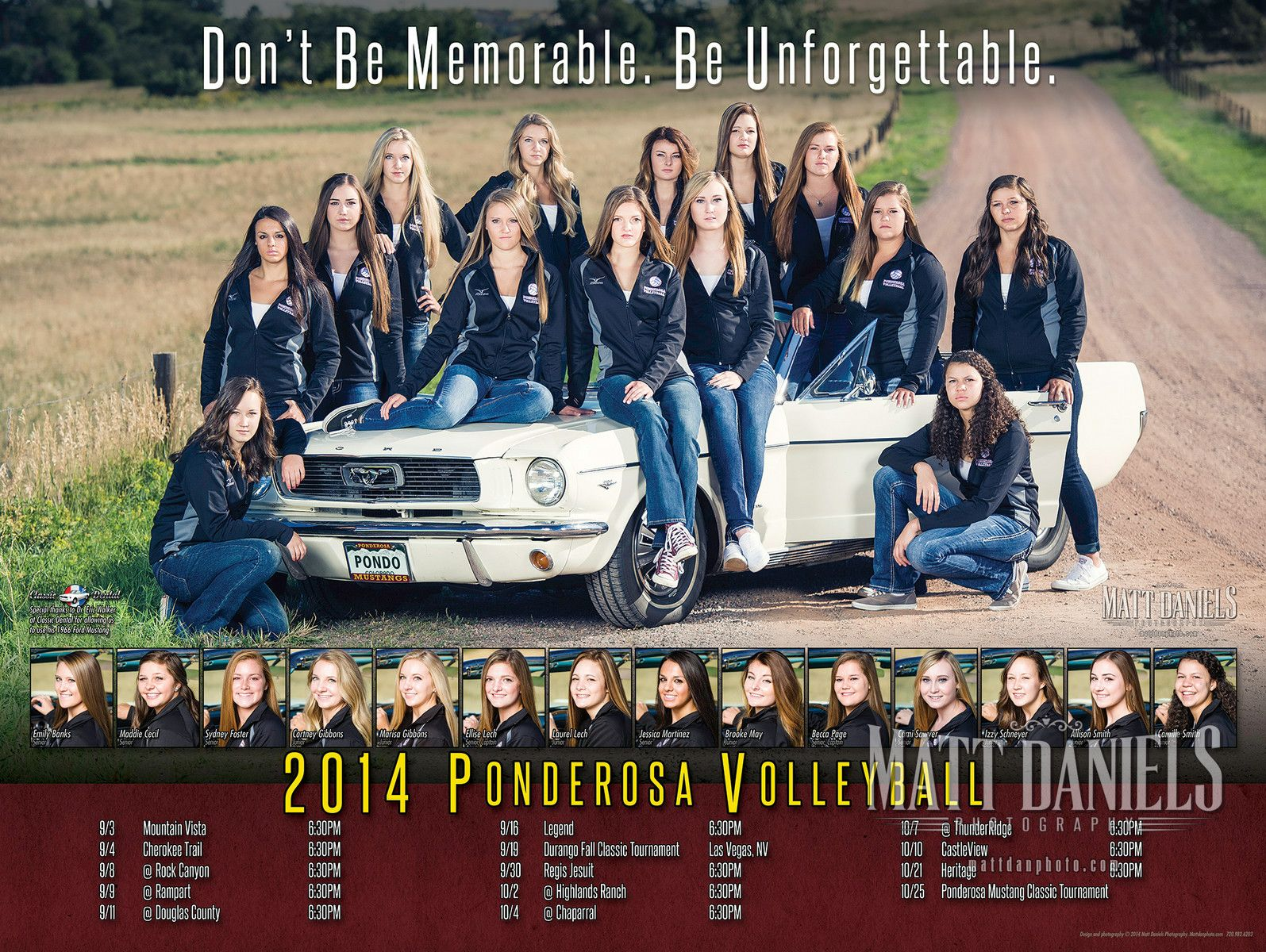 Photography And Poster Design For The 2014 Ponderosa High School Volleyball Team Matt Daniel Volleyball Team Pictures Volleyball Posters School Sports Posters