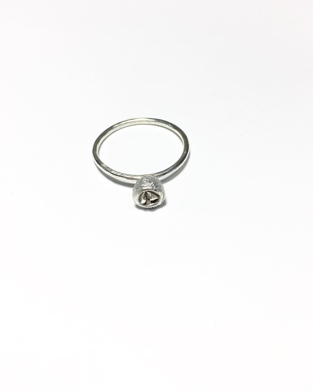 Silver Gum Nut Ring Www Katemacindoe Com Jewellery I Make