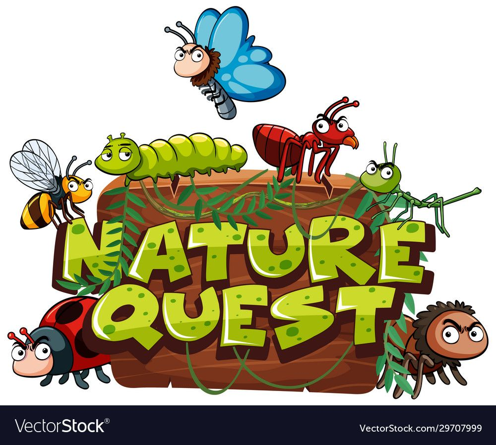 Font design for word nature quest with many bugs in
