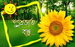 Good morning image download in bengali