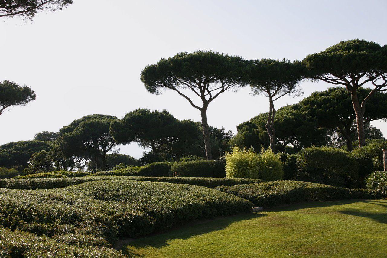Saint tropez jardin bord de mer jardins bord de mer et galerie - Jardin de bord de mer ...