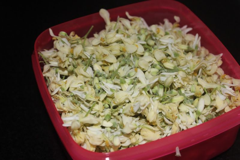Drumstick Flower Fry Food Recipe Form Fries