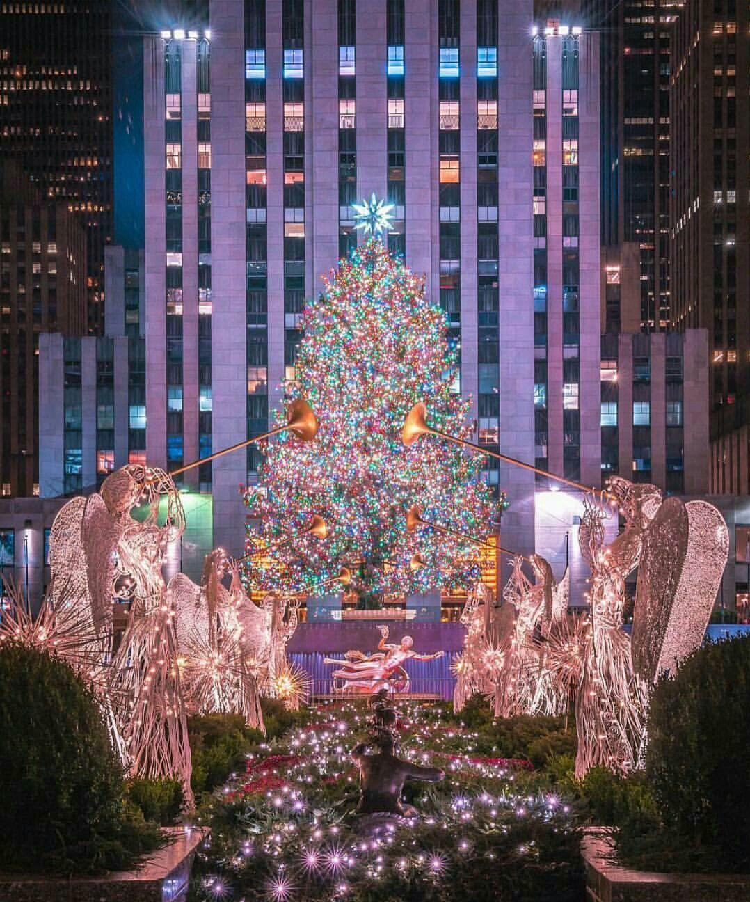 Christmas Tree In Ny: Rockefeller Center Christmas Tree, New York City, USA In