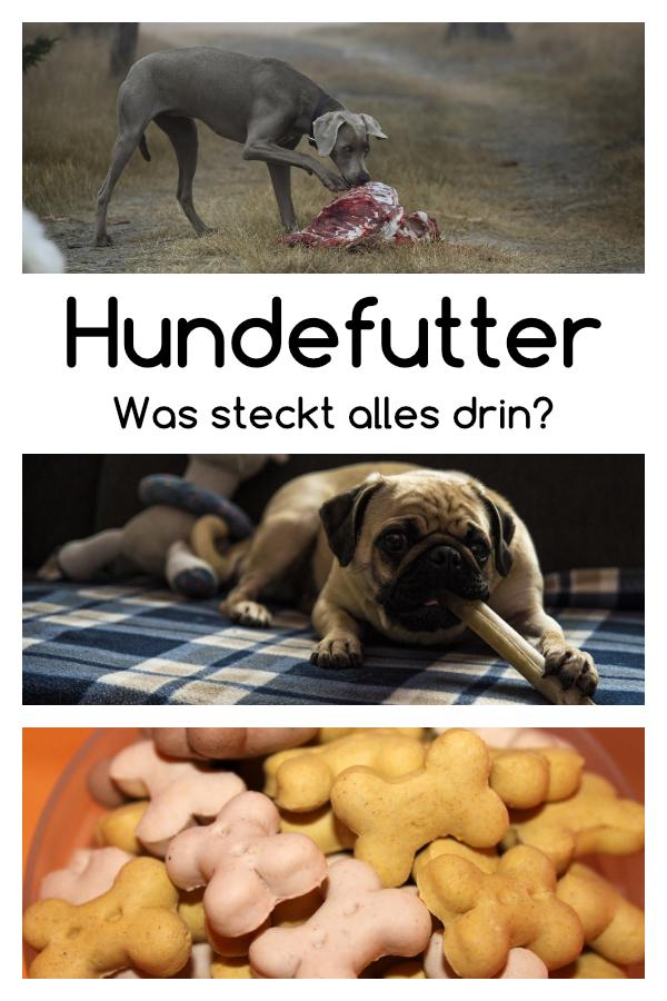 Deklarationen Im Hundefutter Was Steckt Wirklich Drin Hunde Futter Hundefutter Hunde Ernahrung