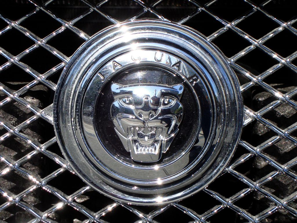 Jaguar cars logo symbolcar company logos n wallpapers car jaguar cars logo symbolcar company logos n wallpapers car buycottarizona