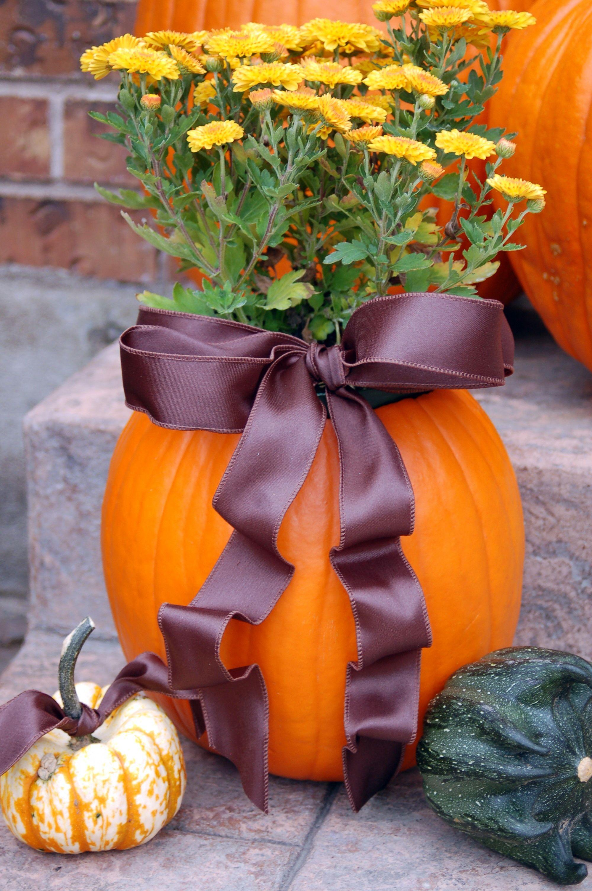 Fall decor for wedding Pumpkin planter aka