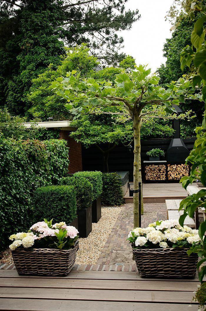 Outdoor Landscape Design Tips That Invite Delight