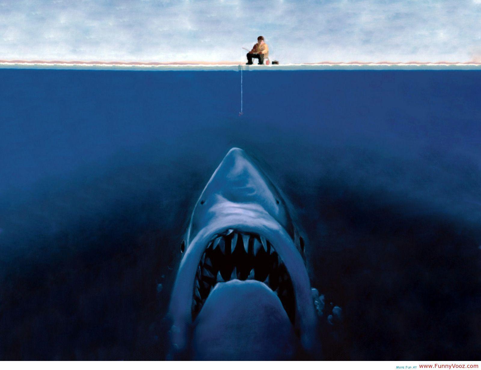 3d Shark Optical Illusions Blue Shark Fish Eat A Man Funny Wallpapers Funny Vooz Sharks Funny Funny Wallpapers Funny Wallpaper
