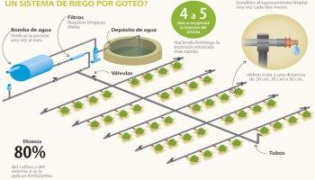 Aprende A Diseñar Un Sistema De Riego Riego Por Goteo Casero Riego Por Goteo Sistema De Riego Por Goteo