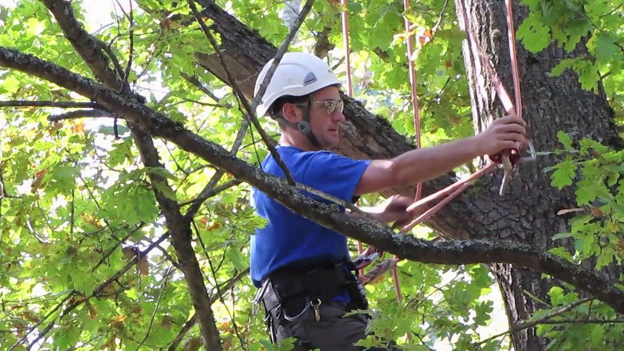 Climbing system repositioning recreational climbing
