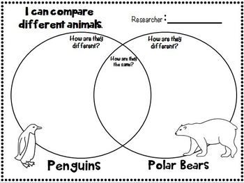 venn diagrams for kindergarten and first grade kid