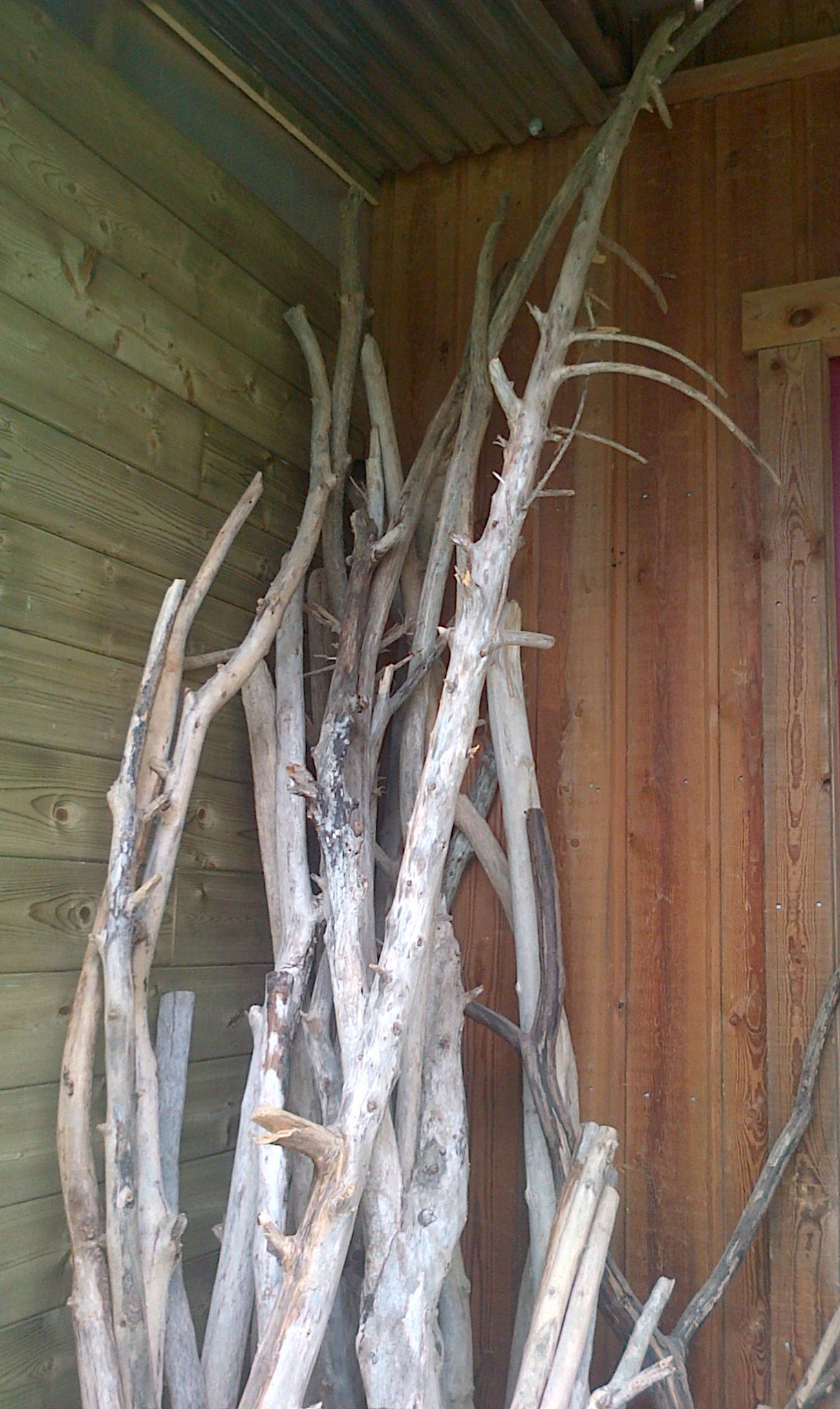 Bois Flotté Pour Pergola branches de bois flotté | 流木