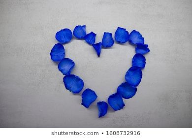 heart made of blue rose petals on gray background top view