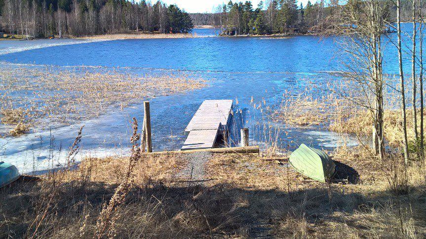 """Eija Helminen on Twitter: """"Onko unta ja tottakaan lain? Kuvan venerannasta just sain: jäät lähteneet viimein on! Ilo ihan rajaton! #saareen <3 https://t.co/zQcc4m2Py1"""""""
