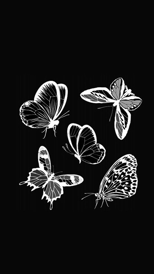 Iphone Butterfly Wallpaper Black And White