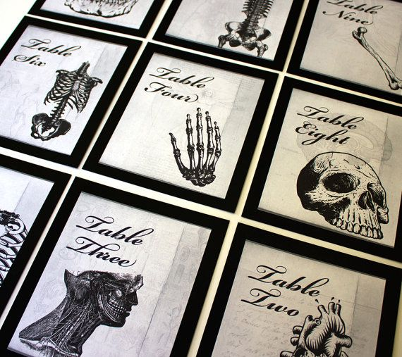 Anatomical Wedding Halloween Table Number by ShannaMicheleDesigns oooh nurse wedding porn