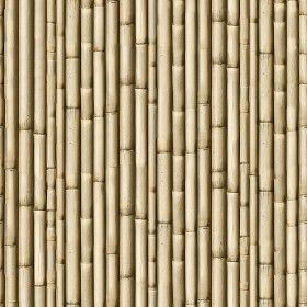 Textures - NATURE ELEMENTS - BAMBOO - Bamboo texture seamless 12266 #woodtextureseamless