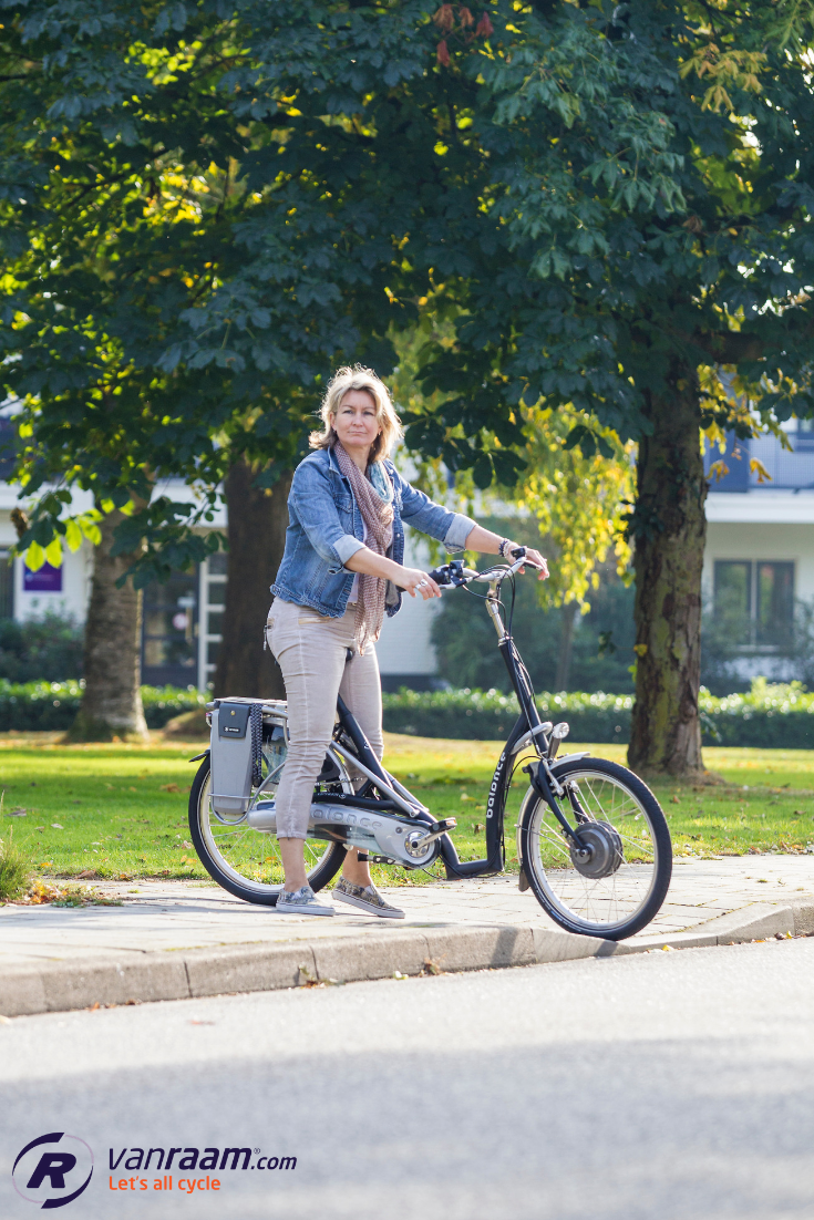 Safe Electric Bike For Elderly The Balance By Van Raam Is A