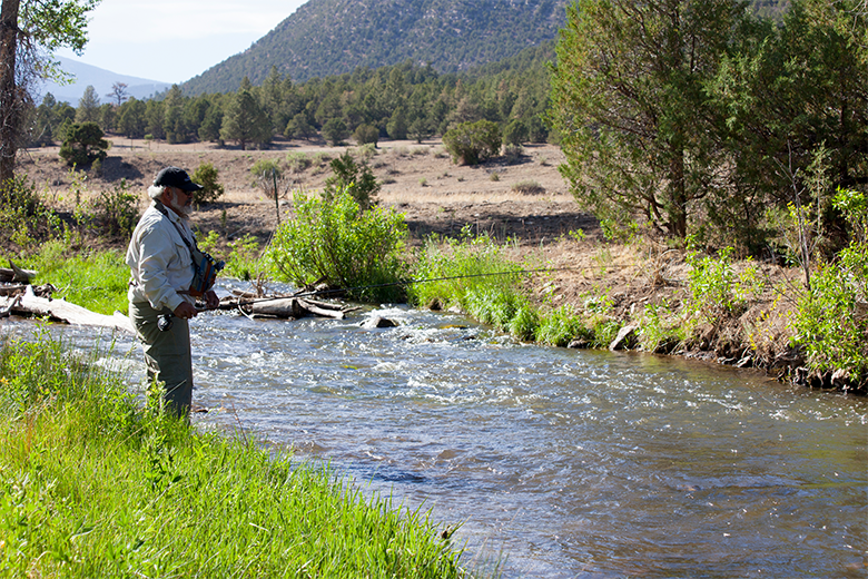 Cimarron River The Cimmarron River Is Another Good Fishery For Beginners Very Easy Access Off Us 64 Makes Cimarron New Mexico New Mexico Land Of Enchantment