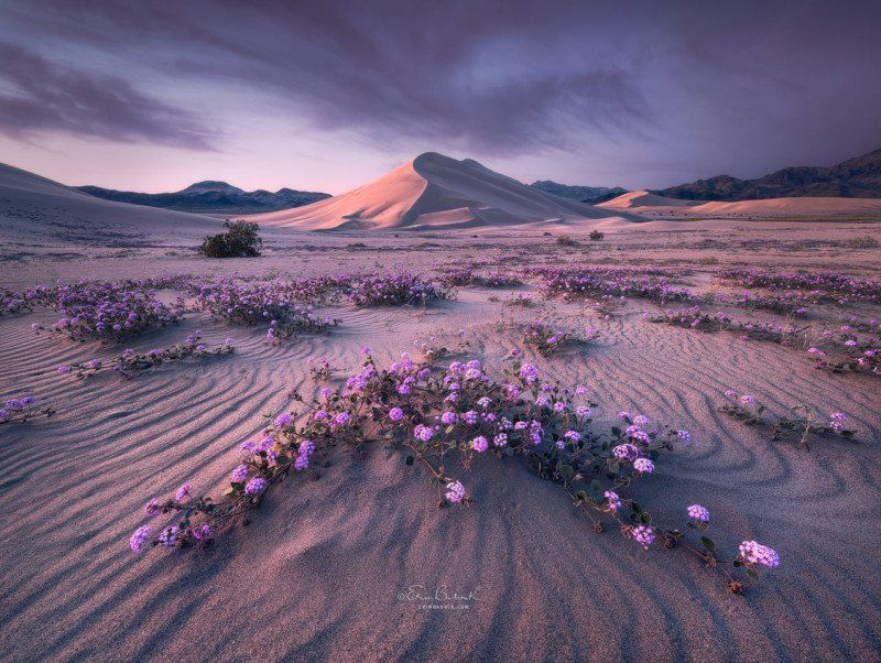 Creative Applications Of Color Theory In Landscape Photography Beautiful Landscapes Landscape Photography Nature