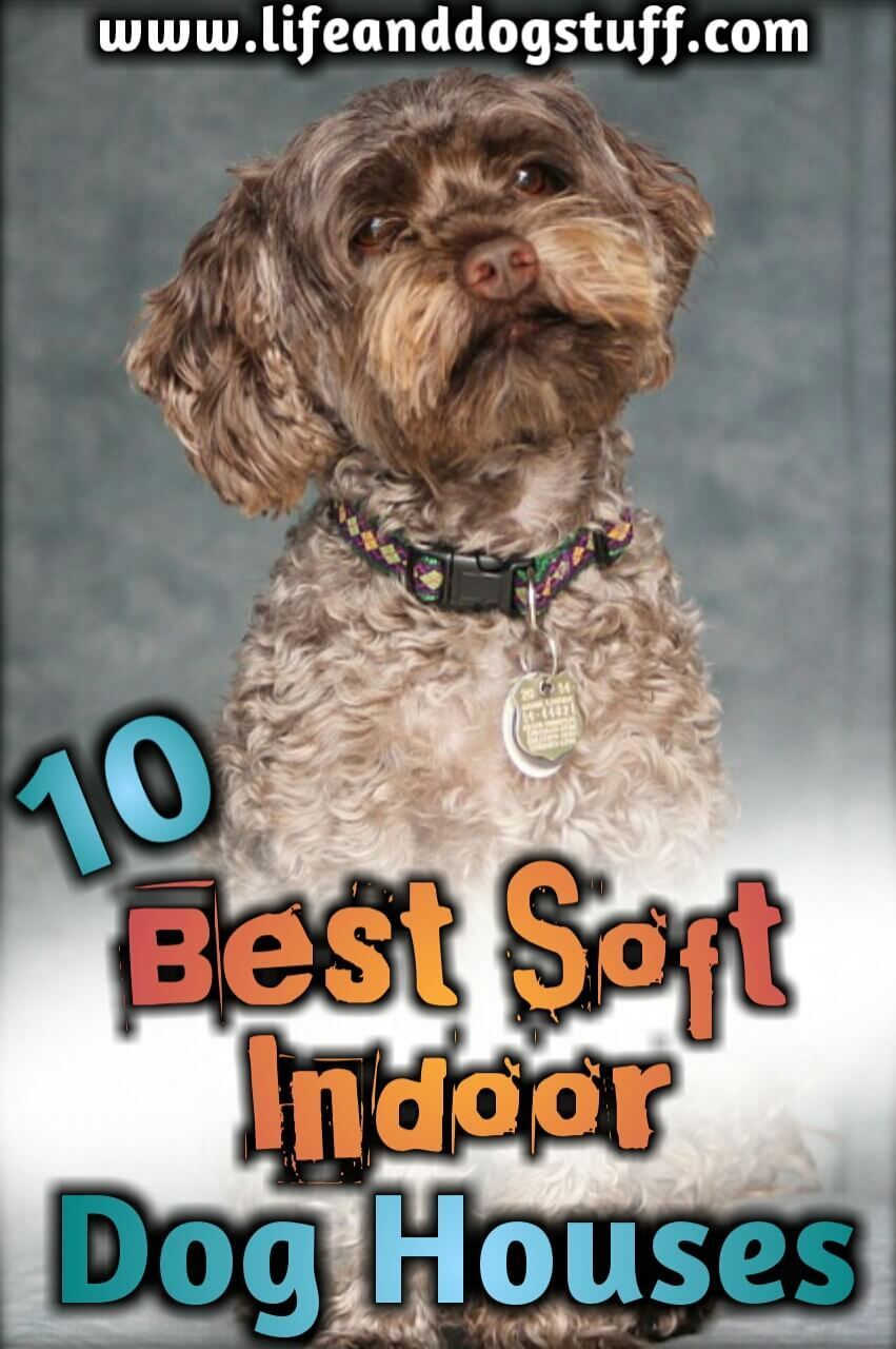 10 Best Soft Indoor Dog Houses For Small Dogs Dog Houses Dogs